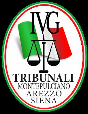 logo_ivg